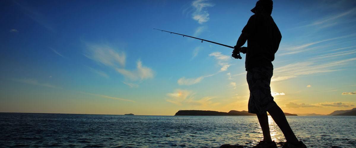 Villa del Palmar Islands of Loreto Fishing