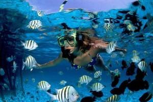 Cancun Scuba